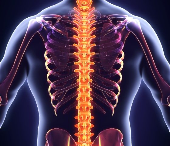 spine advice from our Ealing chiropractor